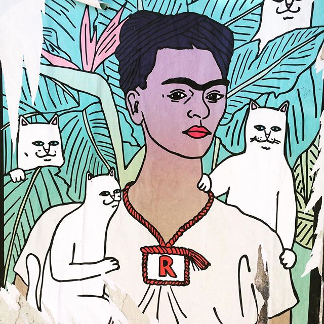 Street Frida with cats #finds  #streetstyle #art #fridakahlo #keepingitreal