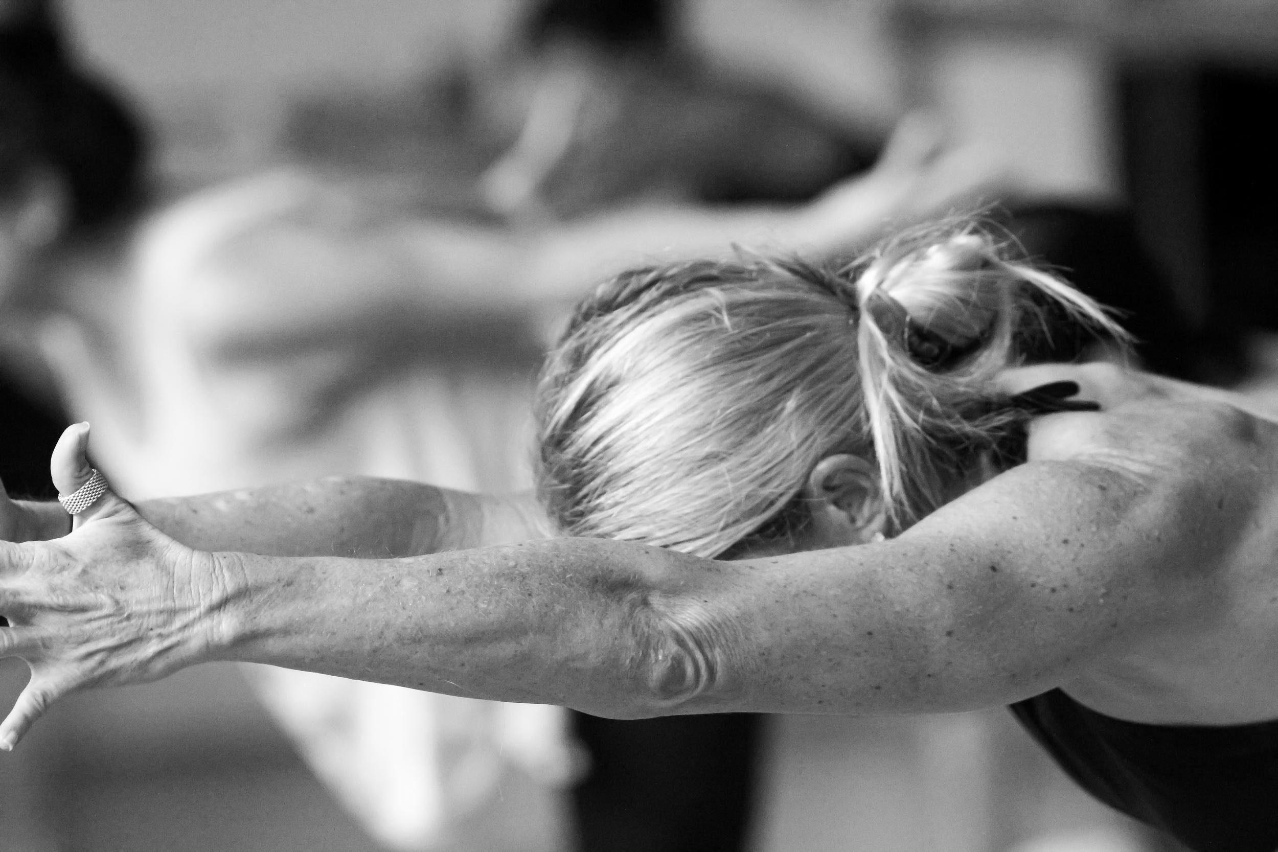 Vet Day Yoga-32.jpg
