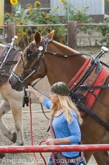 horse_girl.jpg