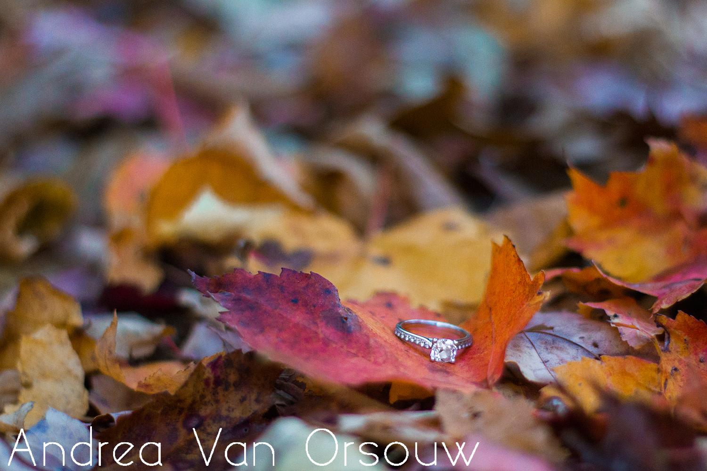fall_leaves_engagement_ring.jpg