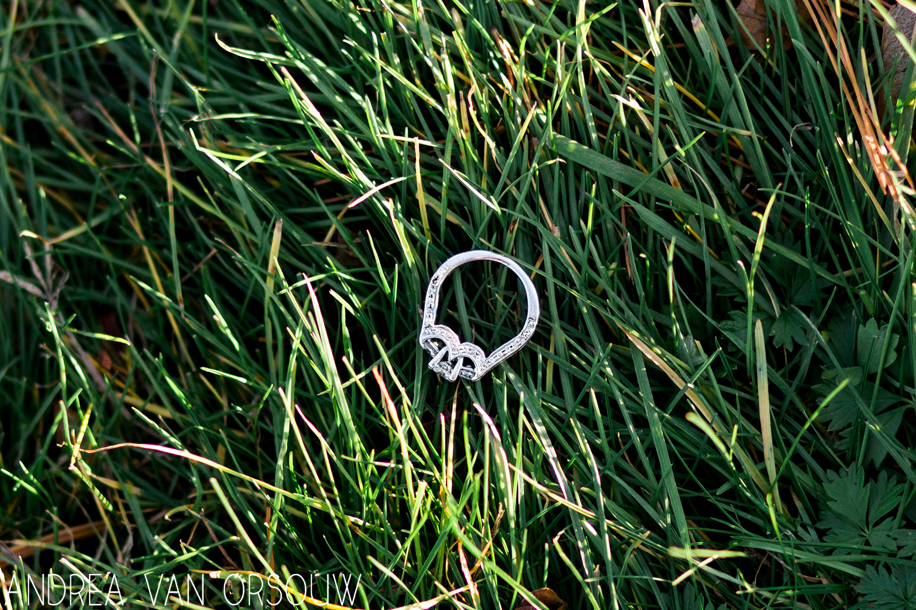 engagement_ring_in_grass_ct_wedding_photographer.jpg