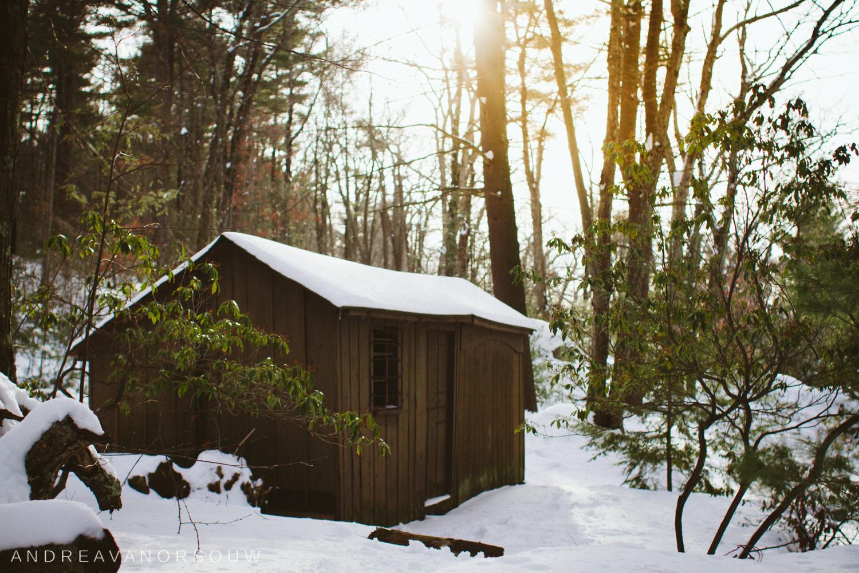 cabin_in_the_woods_ct_wedding_photographer.jpg