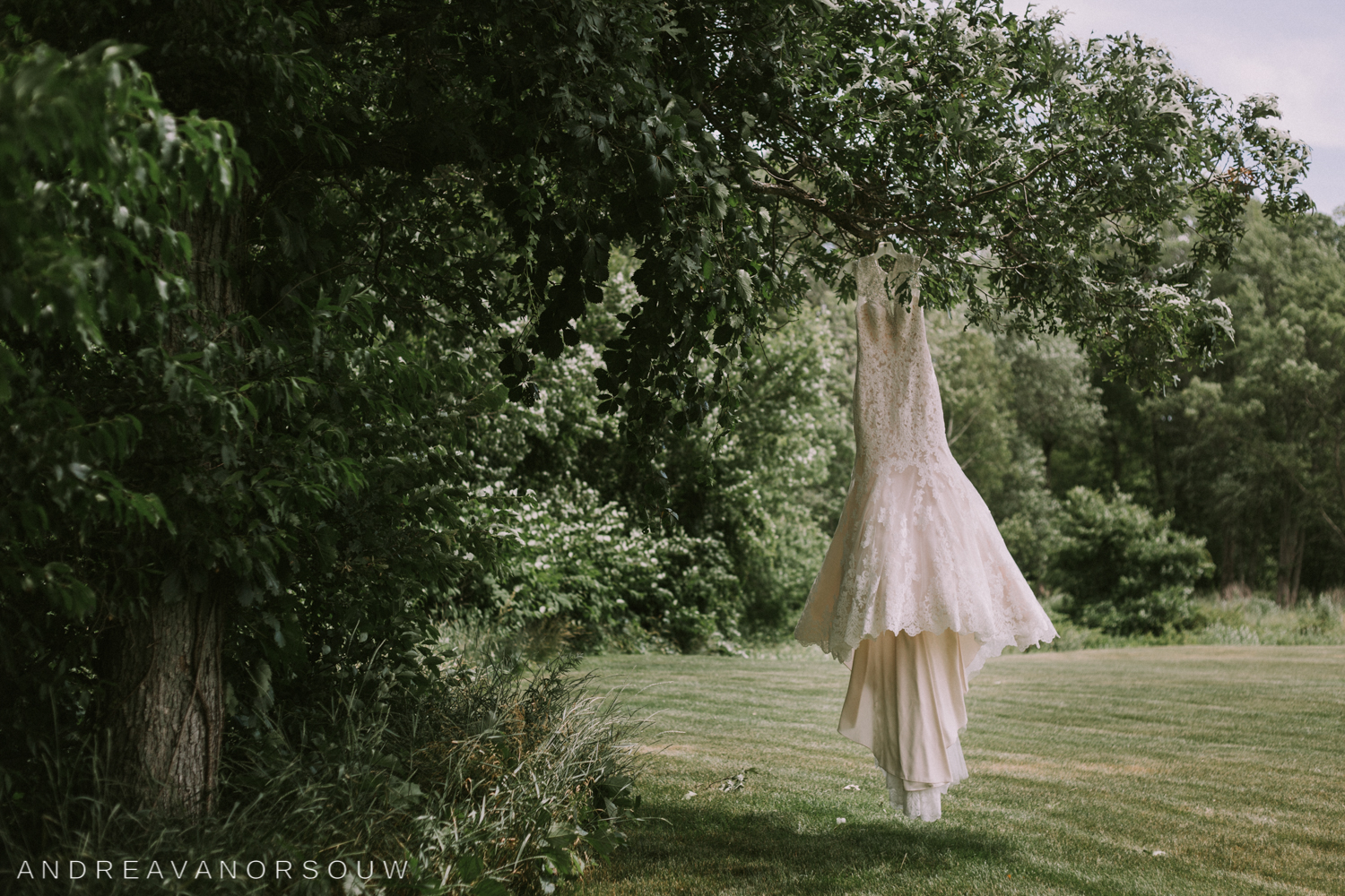 dress_bride_lace_detail_outdoors_tree_kirkbrae_country_club_bride_groom_wedding_rhode_island_lincoln_natural_photography_connecticut_new_england_photographer.jpg