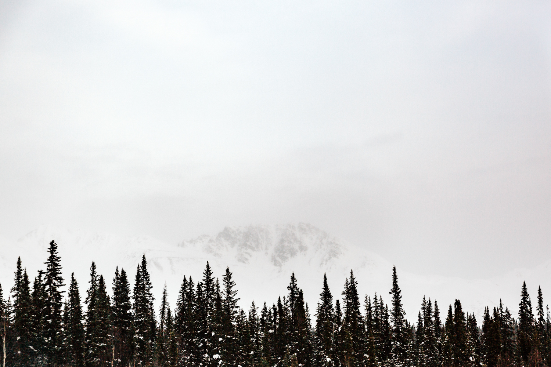 denali-national-park-alaska-fairbanks-travel-photographer-elopement-photography.jpg