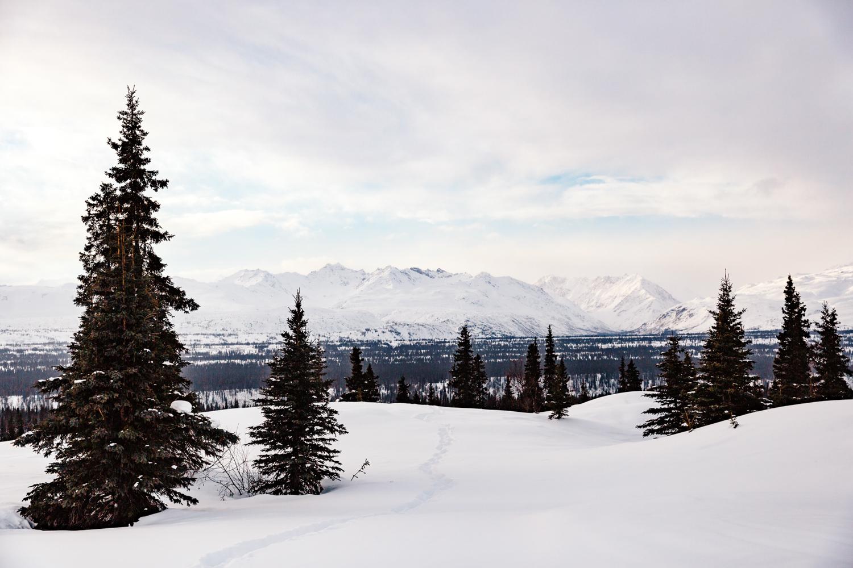 alaska-elopement-photographer-fairbanks-destination-wedding-anchorage.jpg