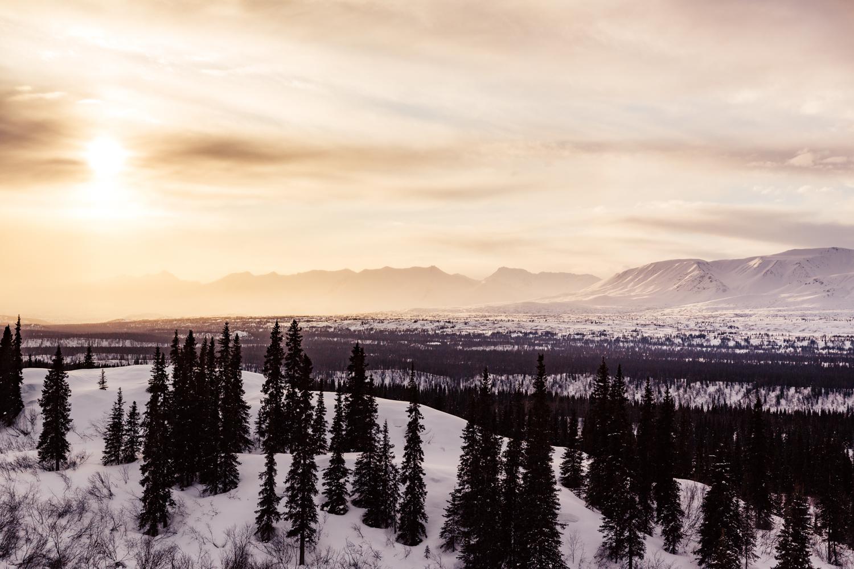 anchorage-fairbanks-alaska-wedding-elopement-photographer-travel.jpg