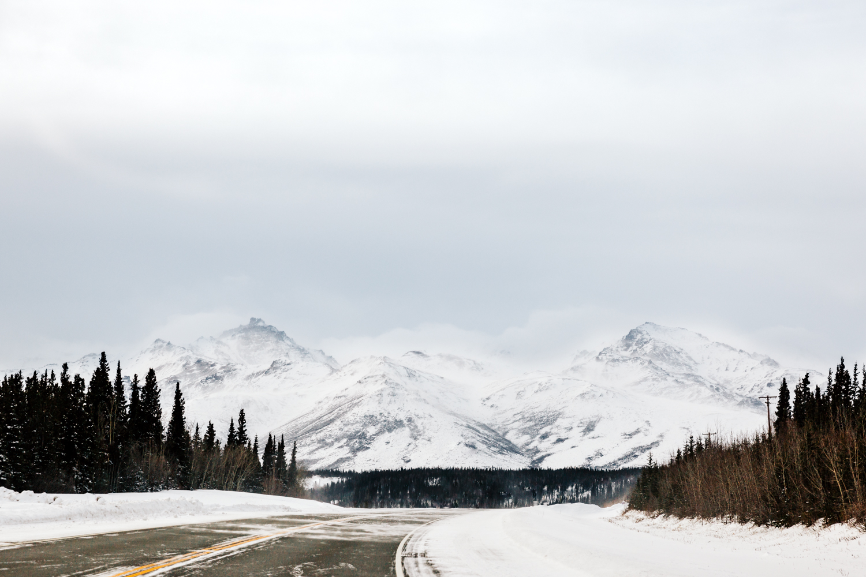 alaska-landscape-photographer-elopement-denali-photography-fairbanks-anchorage.jpg