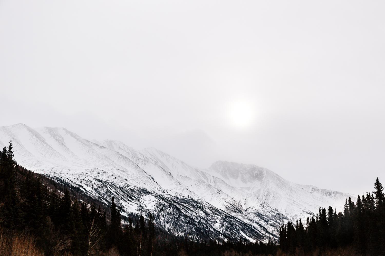 alaska-landscape-photography-denali-national-park-elopement-photography.jpg