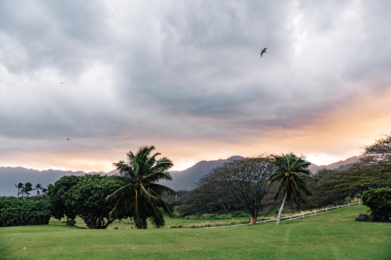 hawaii-sunset-honolulu-elopement-photographer.jpg
