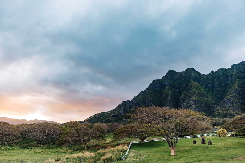 hawaii-adventure-elopement-photographer-honolulu-travel-photography.jpg