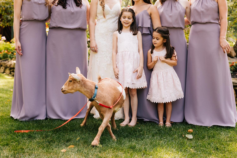 10 adventurous-fun-natural-wedding-photographer-salem-cross-inn-boston-massachusetts-andrea-van-orsouw-photography.jpg