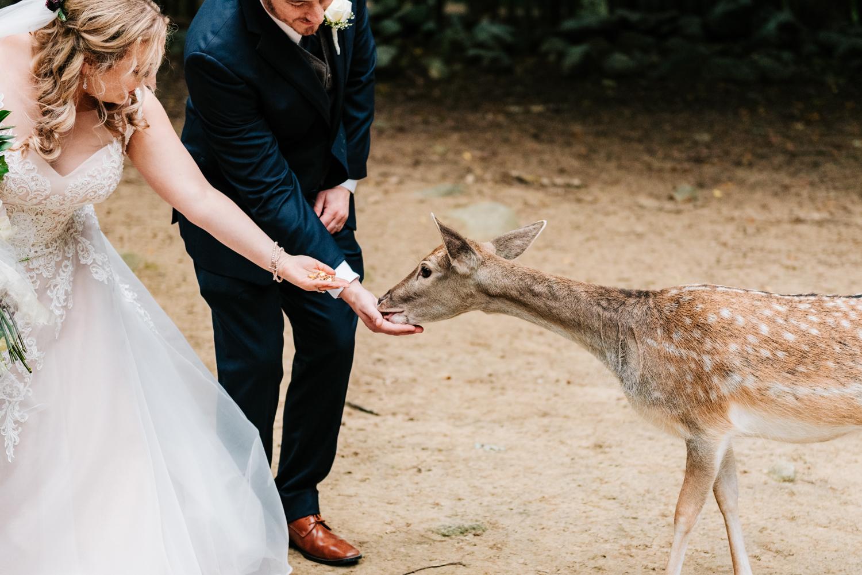albuquerque-fun-photographer-wedding-andrea-van-orsouw-photography-boston-natural-adventurous-4.jpg