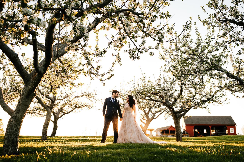 Bride and groom in tree field in Santa Fe