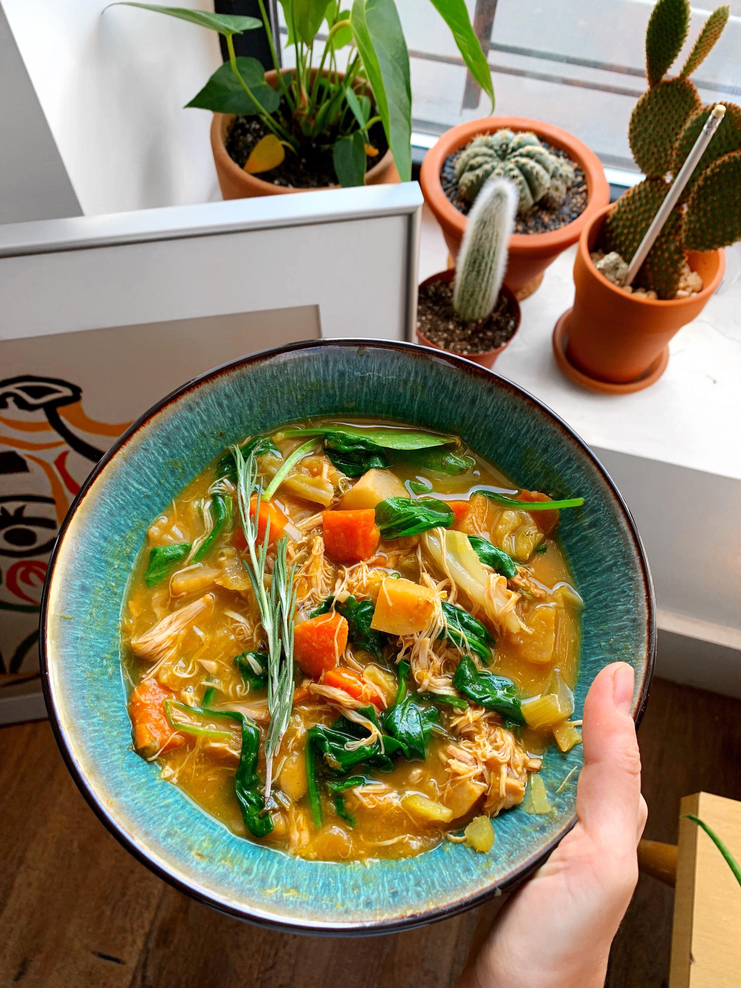 chicken-vegetable-soup.JPG