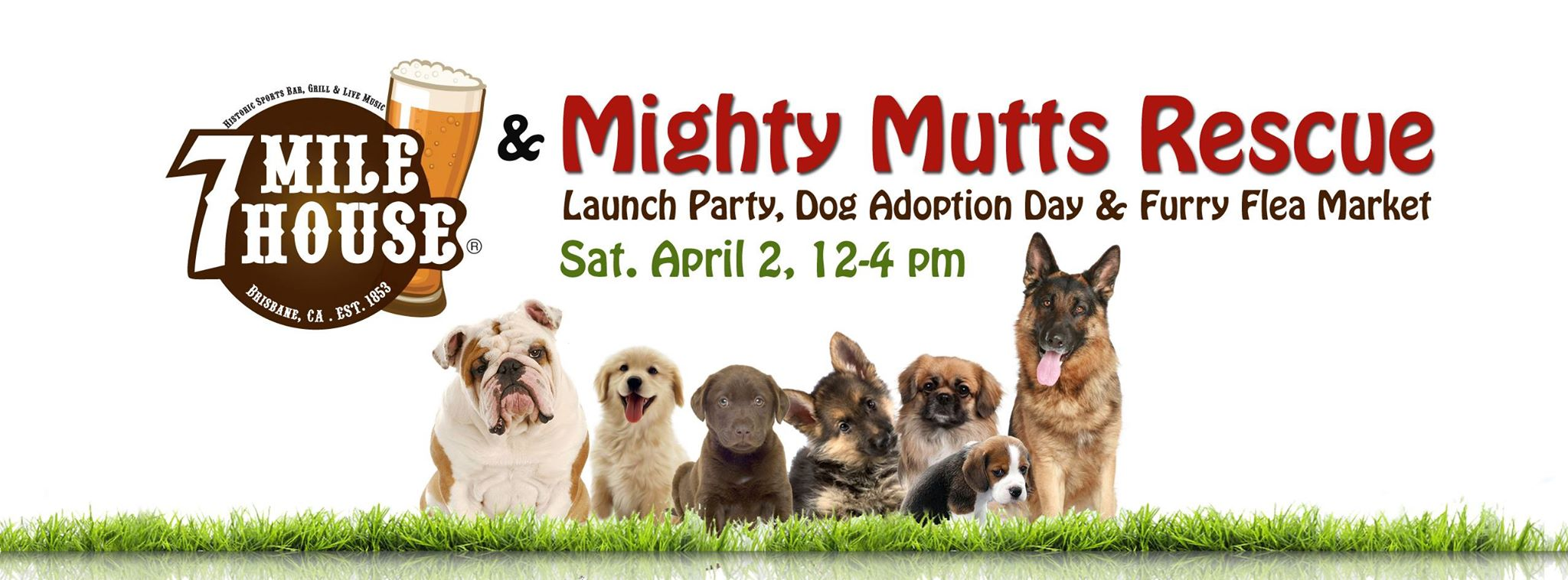 7milehouse-mightymuttsrescue-launch