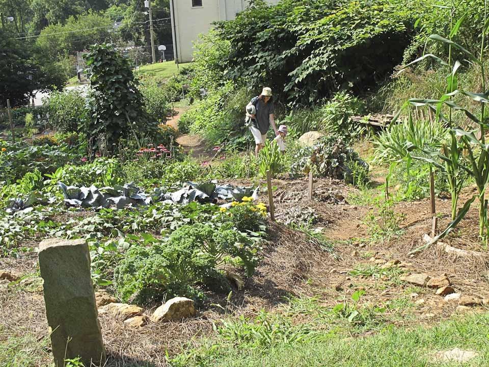 community garden-1552.jpg