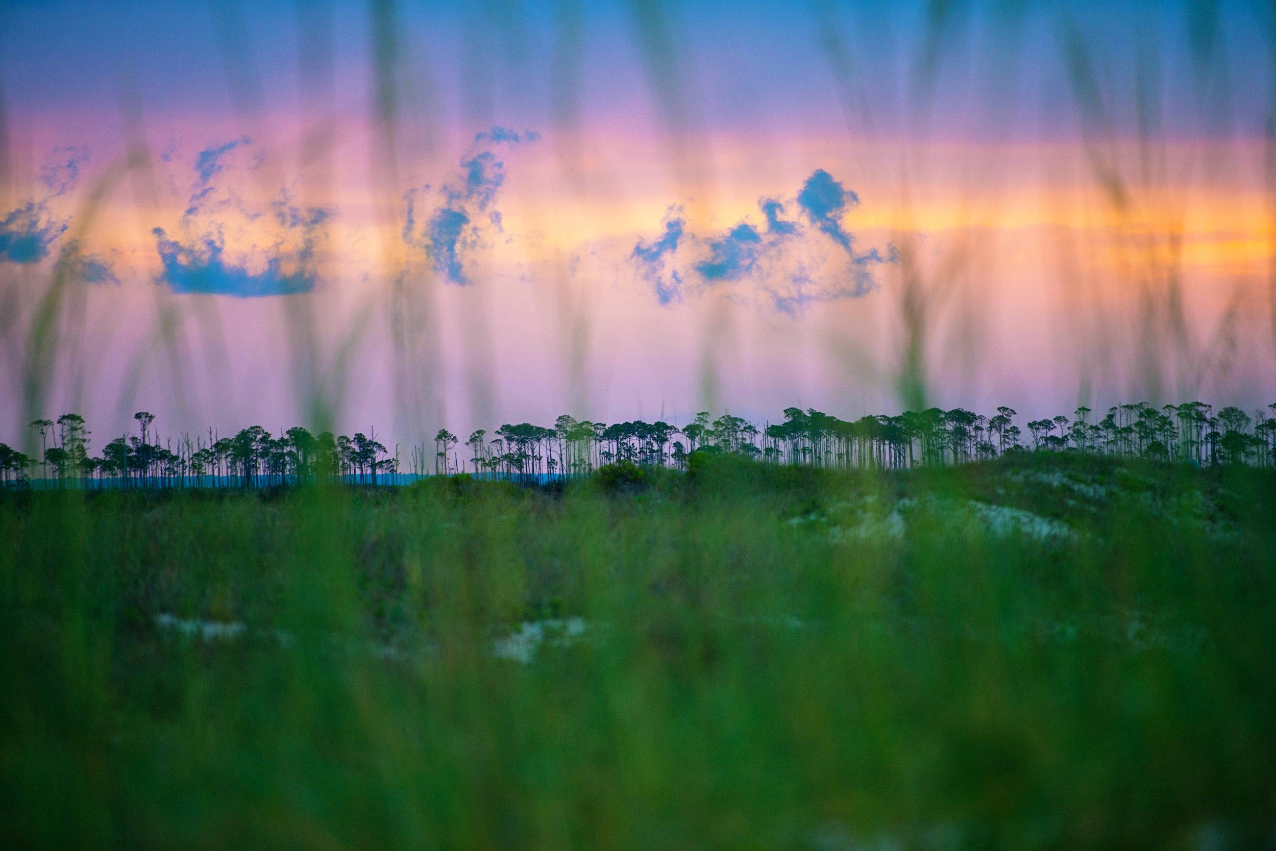 Apalachicola-20.jpg