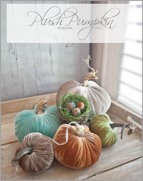 Plush-Pumpkin-Graphic-bHOME.jpg