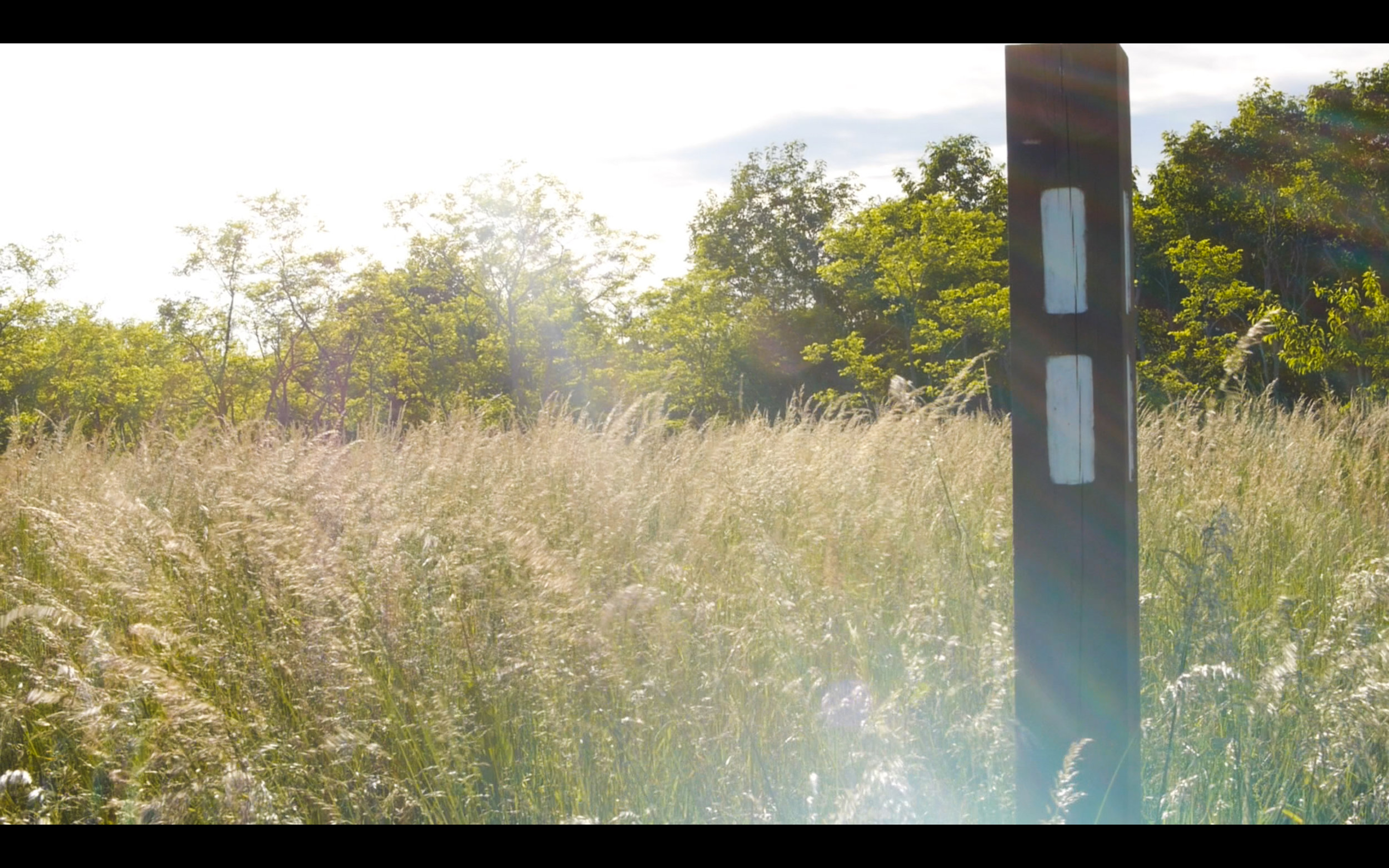 Screen Shot 2016-06-25 at 4.33.24 PM.jpg