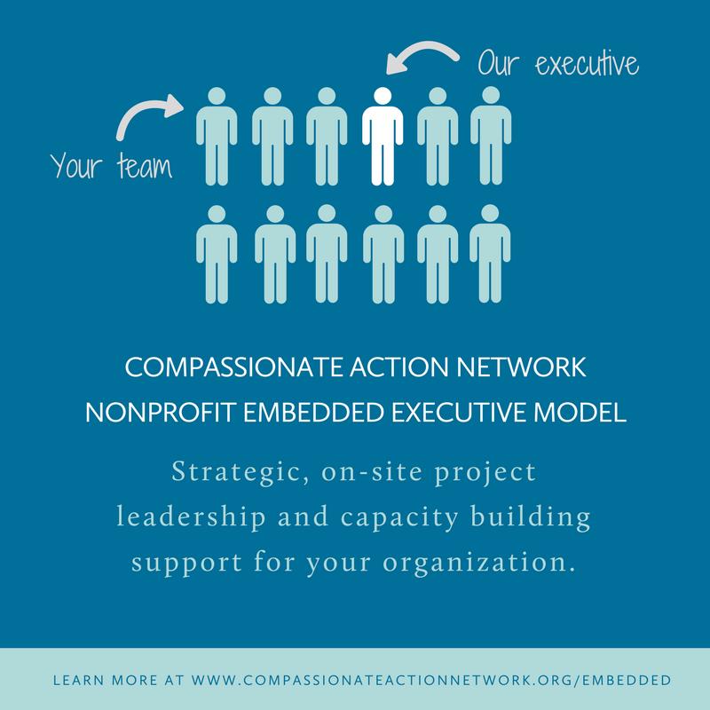 Embedded Executive Model
