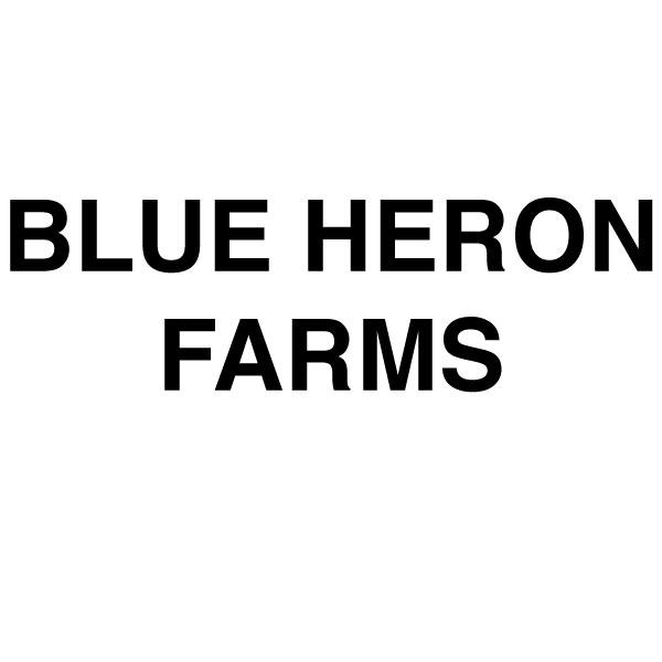 BLUEHERON-01.jpg