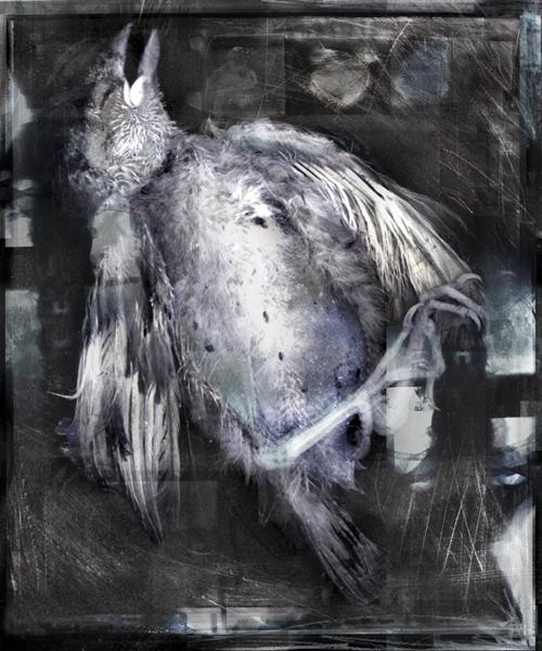 Nevermore02.jpg