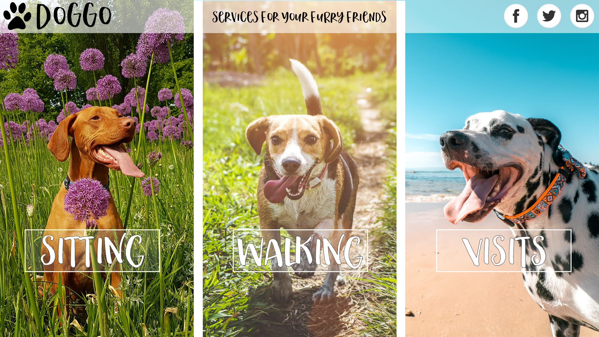 Website Concept  DOGGO Local concierge services for dog owners.