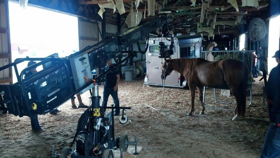 Techno15_horse.jpg