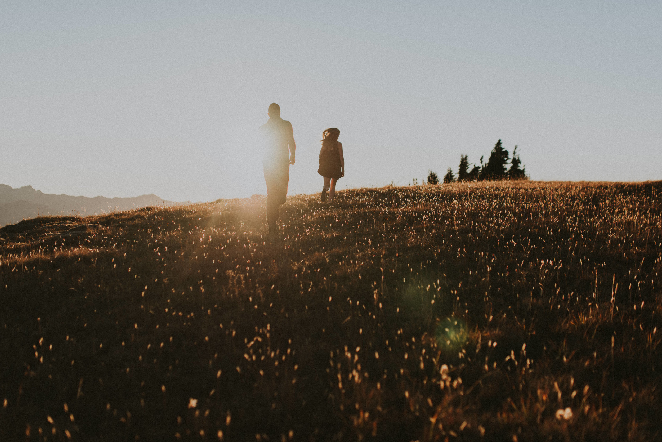 Hurricane Ridge Engagement