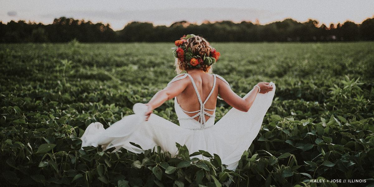 Wedding Collection Filler 5.JPG