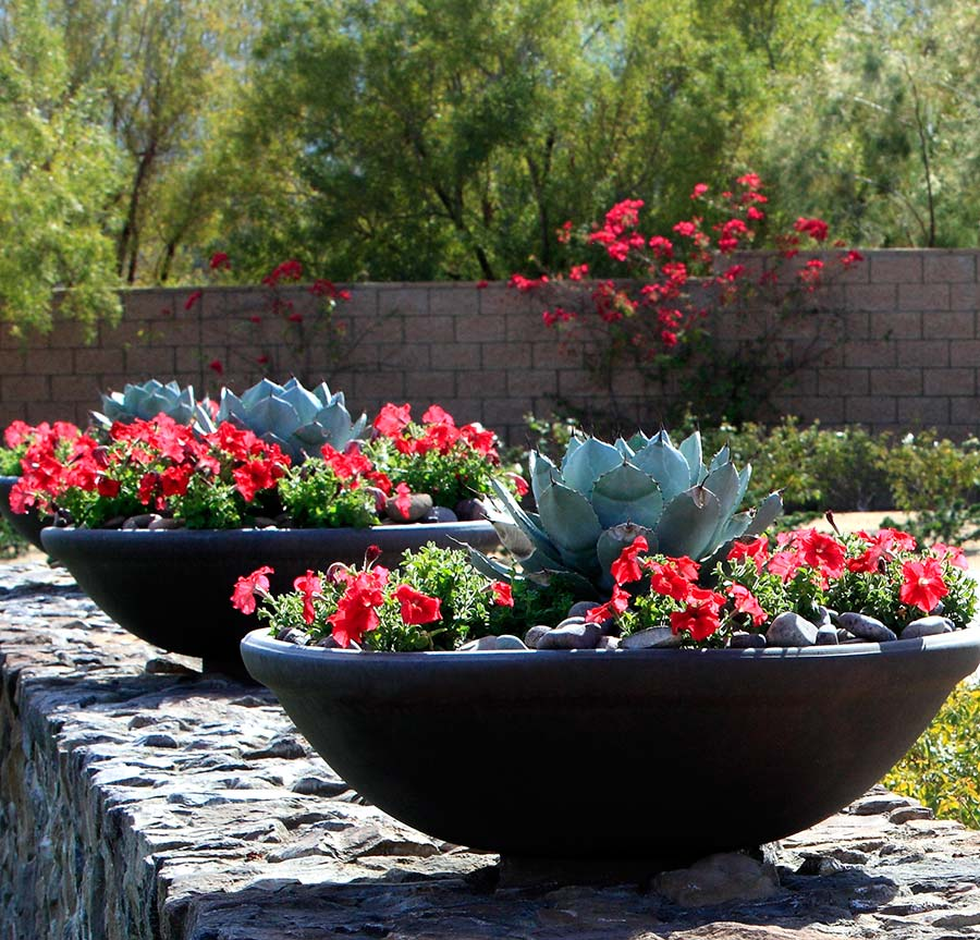 Texas Nativescapes Modern Flower Container Arrangments 02.jpg