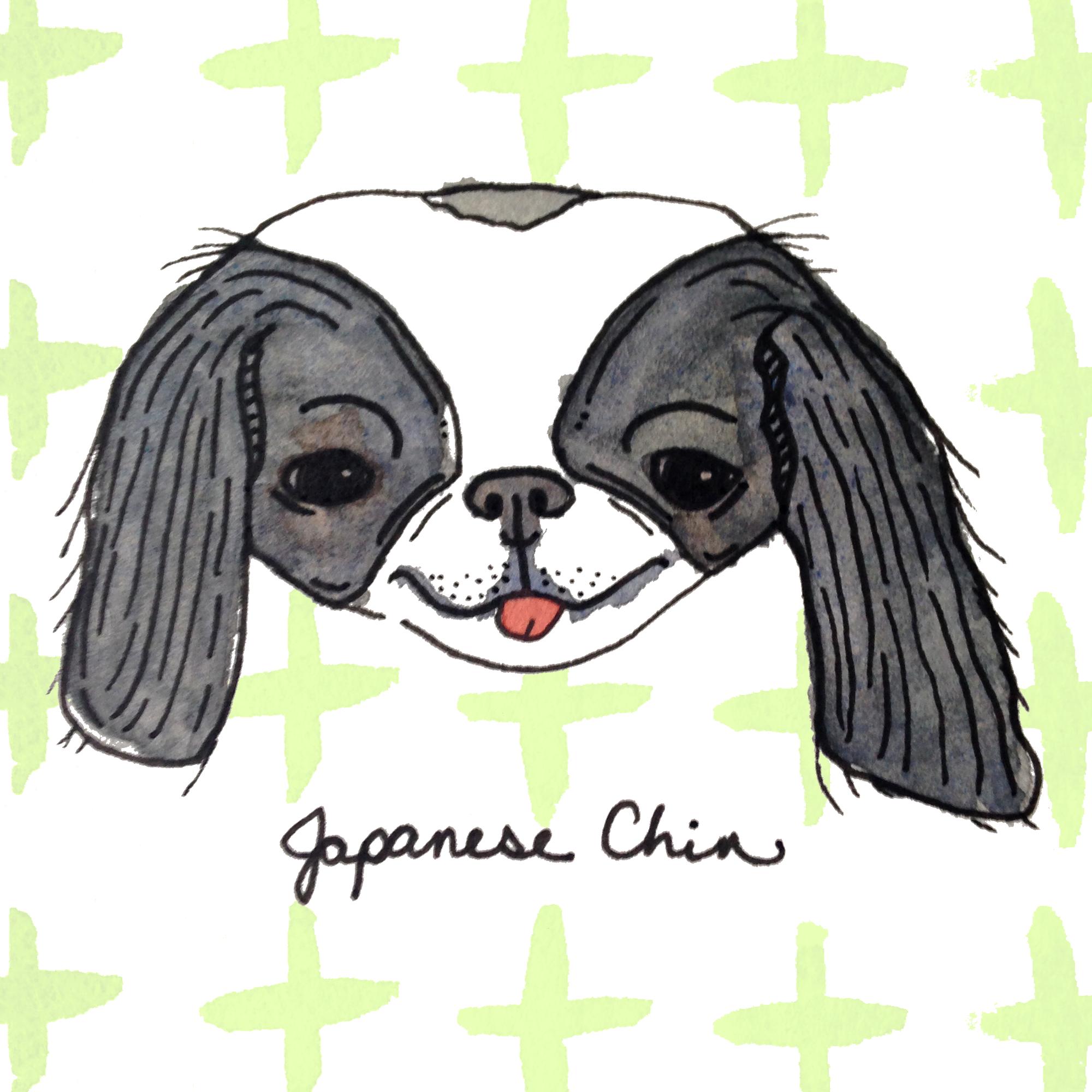 JapaneseChin.png