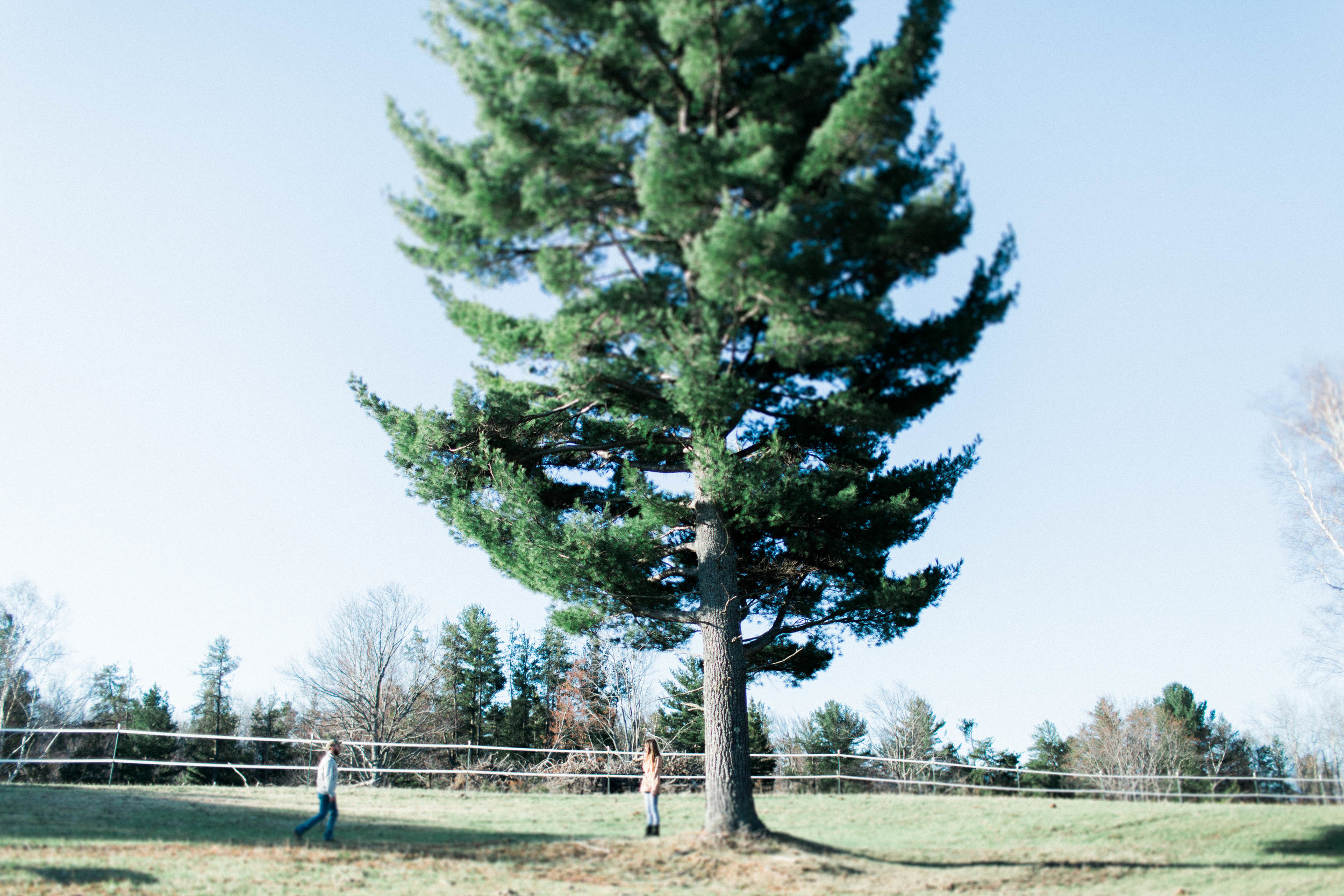 Horse Farm Engagment - Sabrina Leigh Studios - Northern Michigan Wedding Photographer 35.jpg