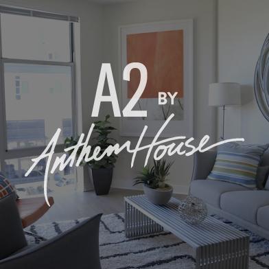 A2 by Anthem ./