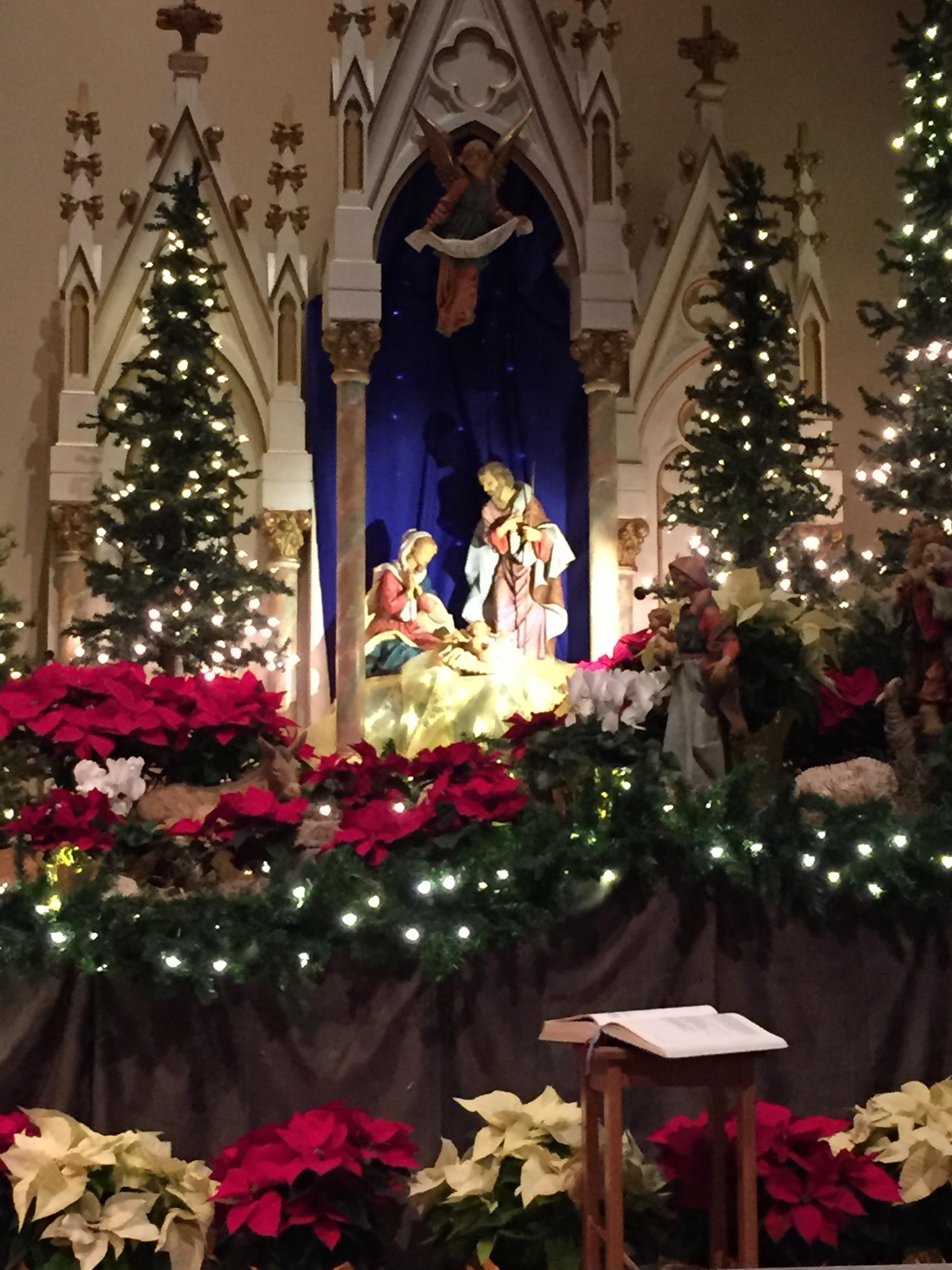 The Nativity scene at my parish.