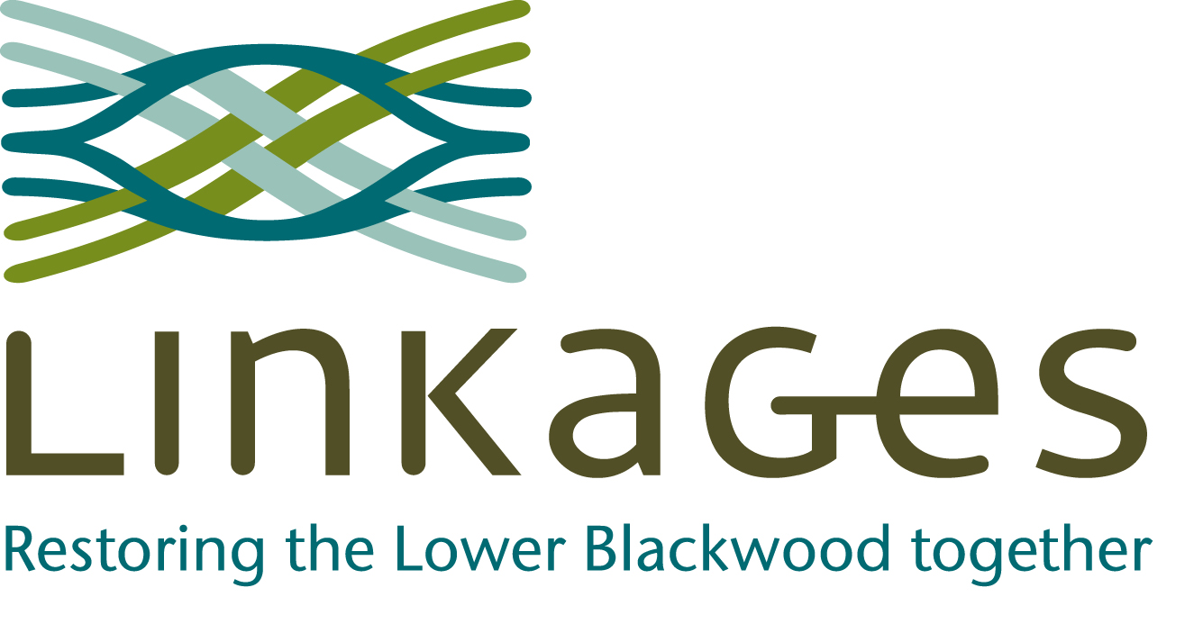 Linkages Logo.jpg