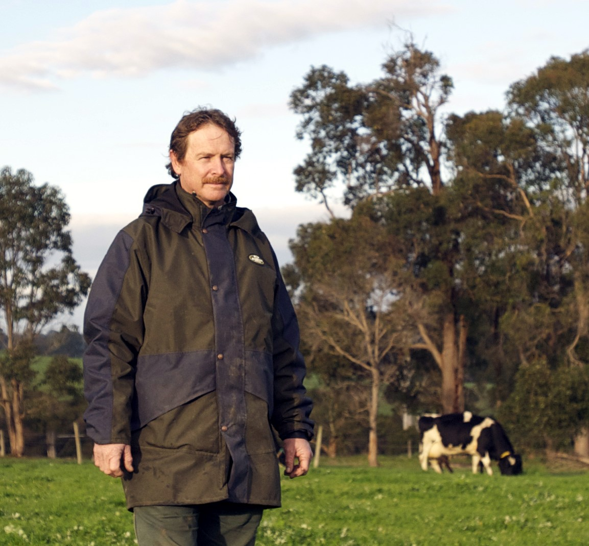 Tim with cows - resized.jpg