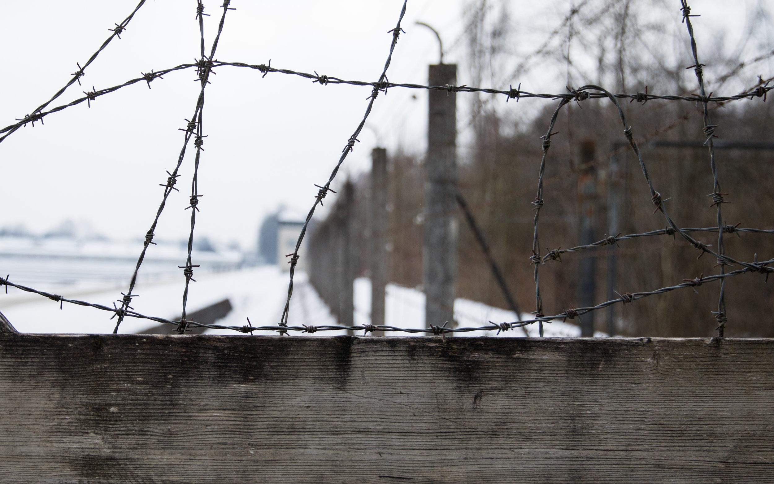 Dachau-16.jpg
