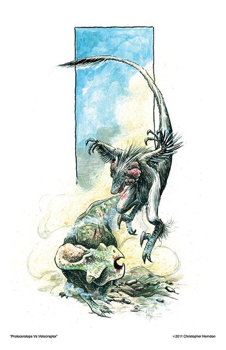 2011protoceratopsvsvelociraptor.jpg