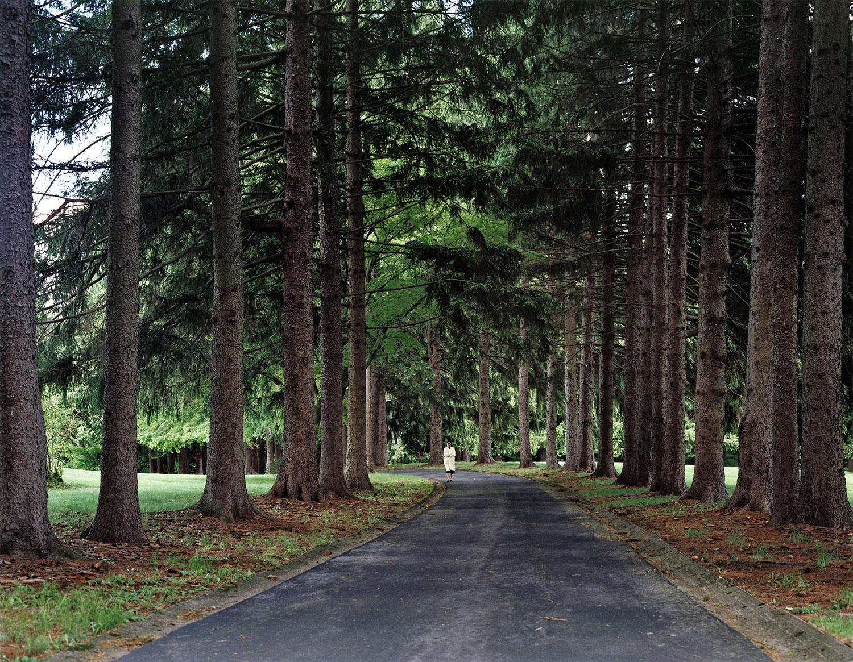 nuns.path.jpg