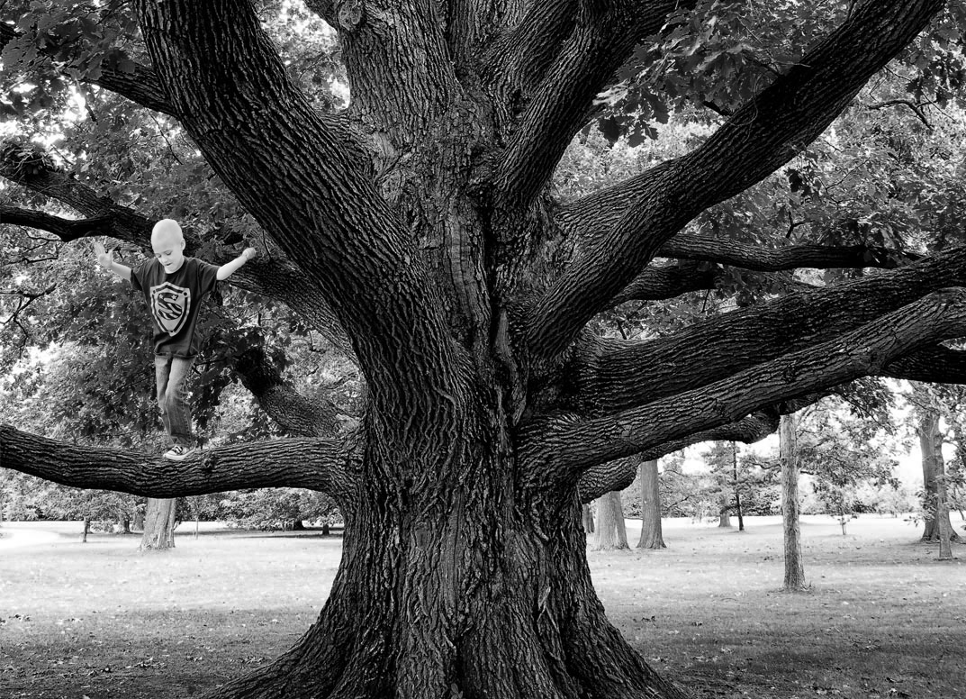 A creative photograph that enhances an image to add emotion. This little boy was sick and passed away. He always wanted to climb a tree, but was unable to do so. A member in the group mentioned above asked us to create a photograph of the young boy climbing a tree. These photographs were impossible to capture, but have a lot of meaning for the family.