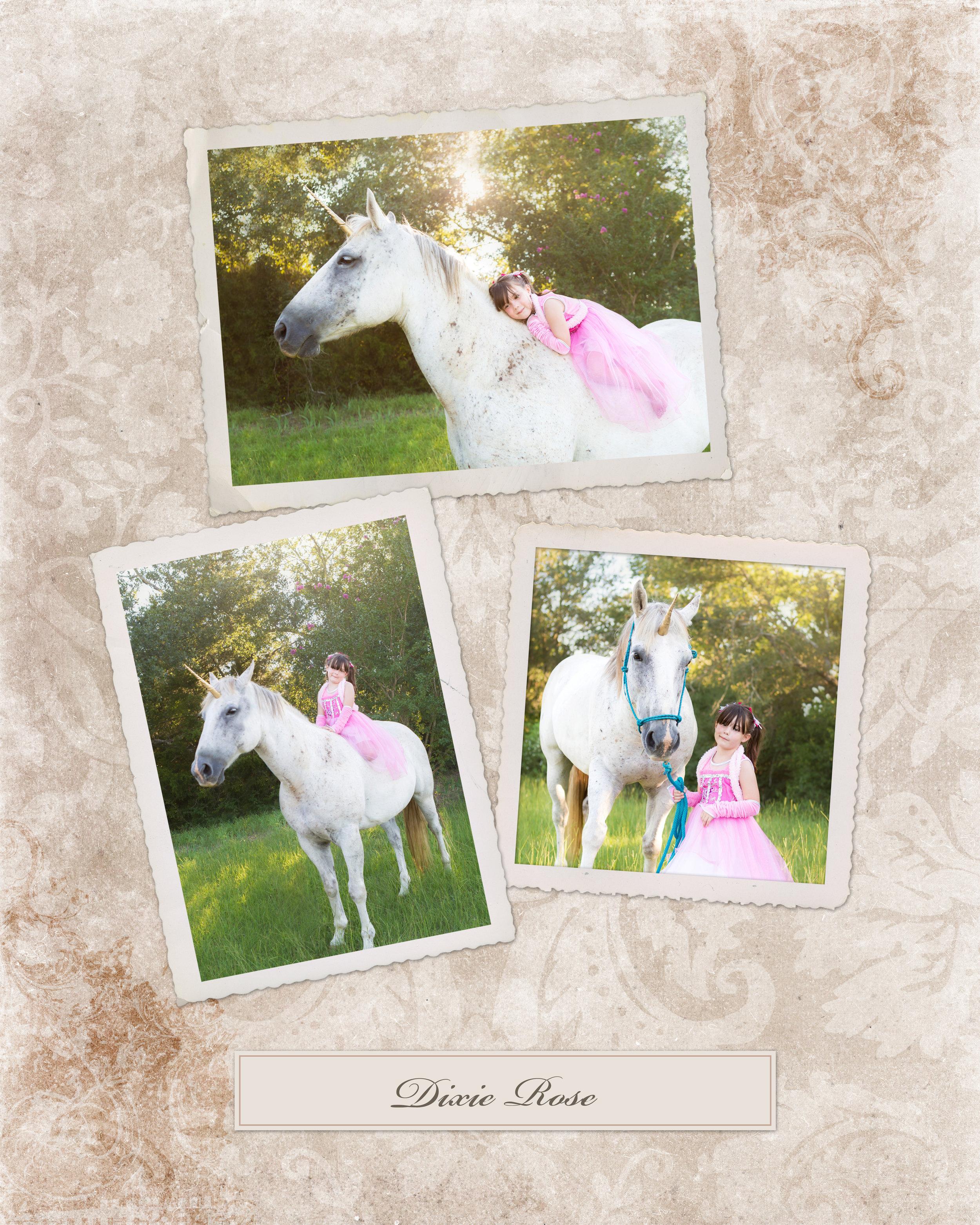 unicorn_mini_session_smith_family_photography_groesbeck