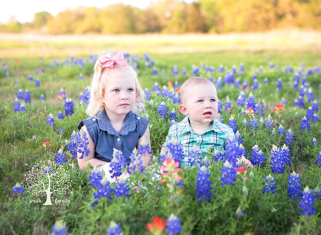 bluebonnets_texans_against_high_speed_rail
