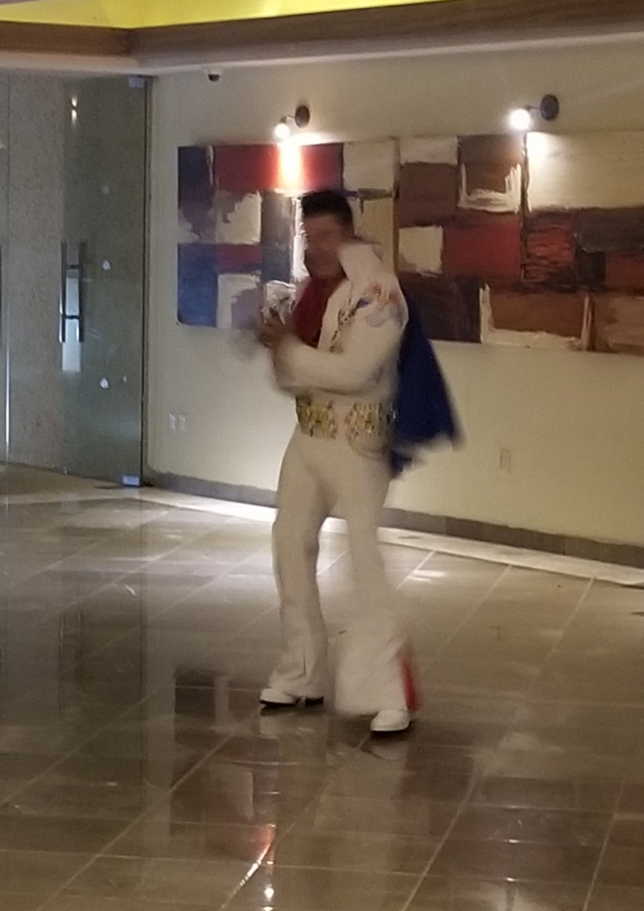 Using the AUTO setting on my phone camera sure did a crappy job at capturing this awesome Elvis!