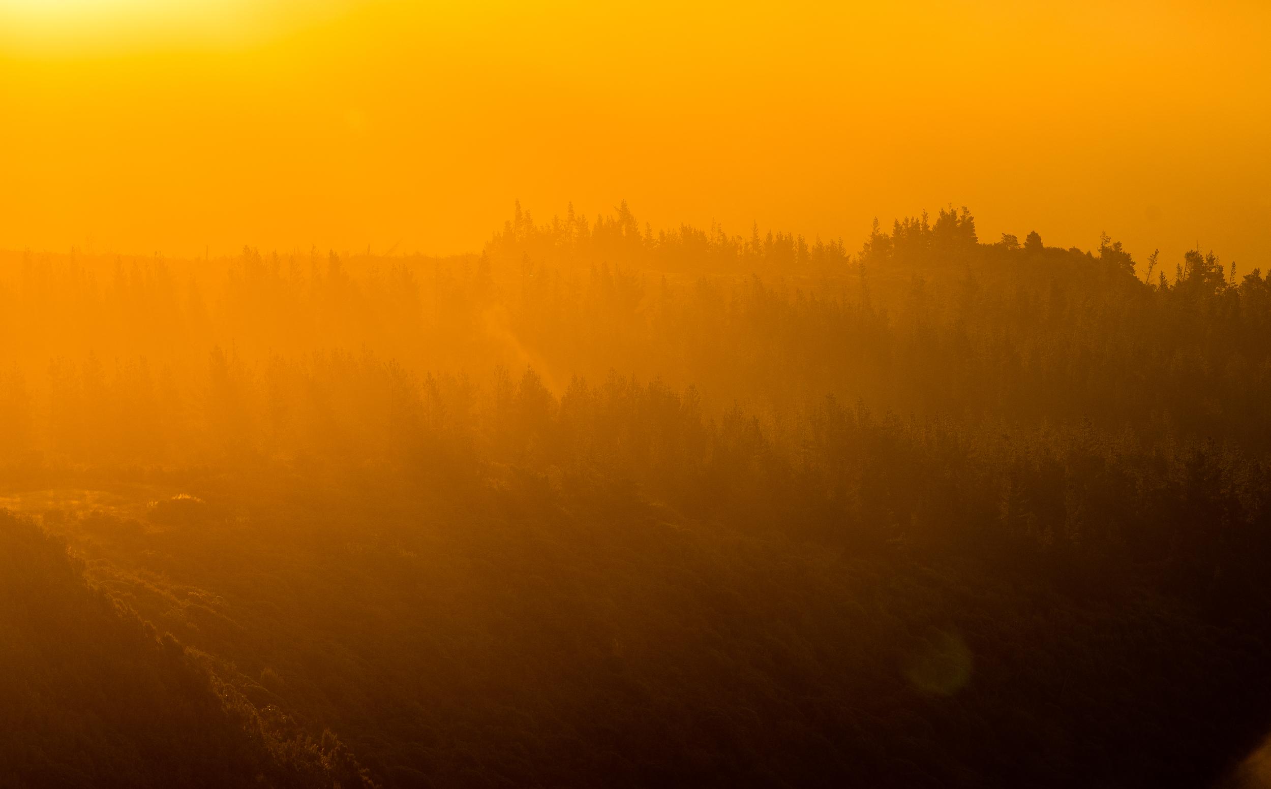 cargill-golden hour-03-may2016-fbook (1 of 1).jpg