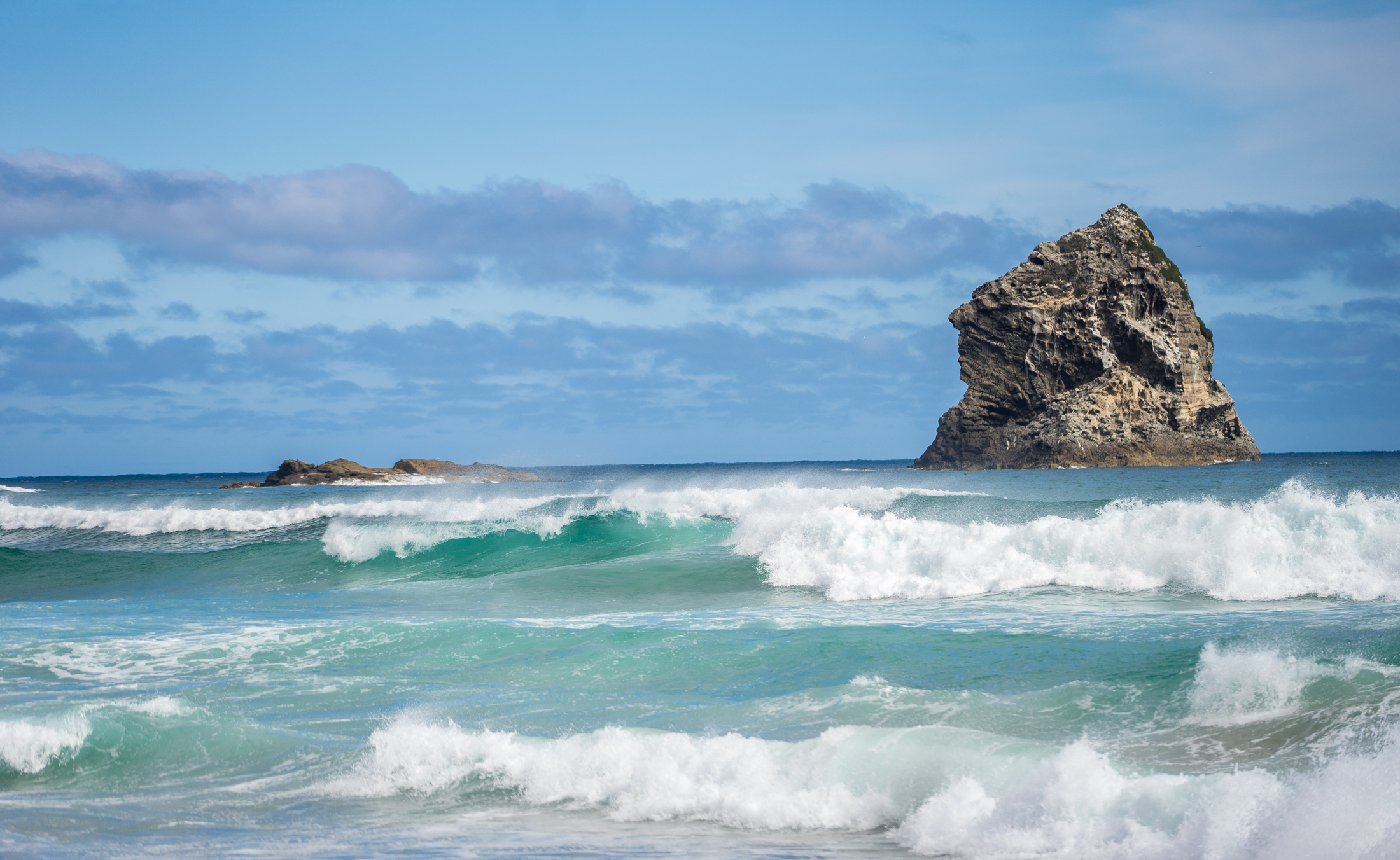 sandfly bay-Dec2015 (1 of 1)-2.jpg