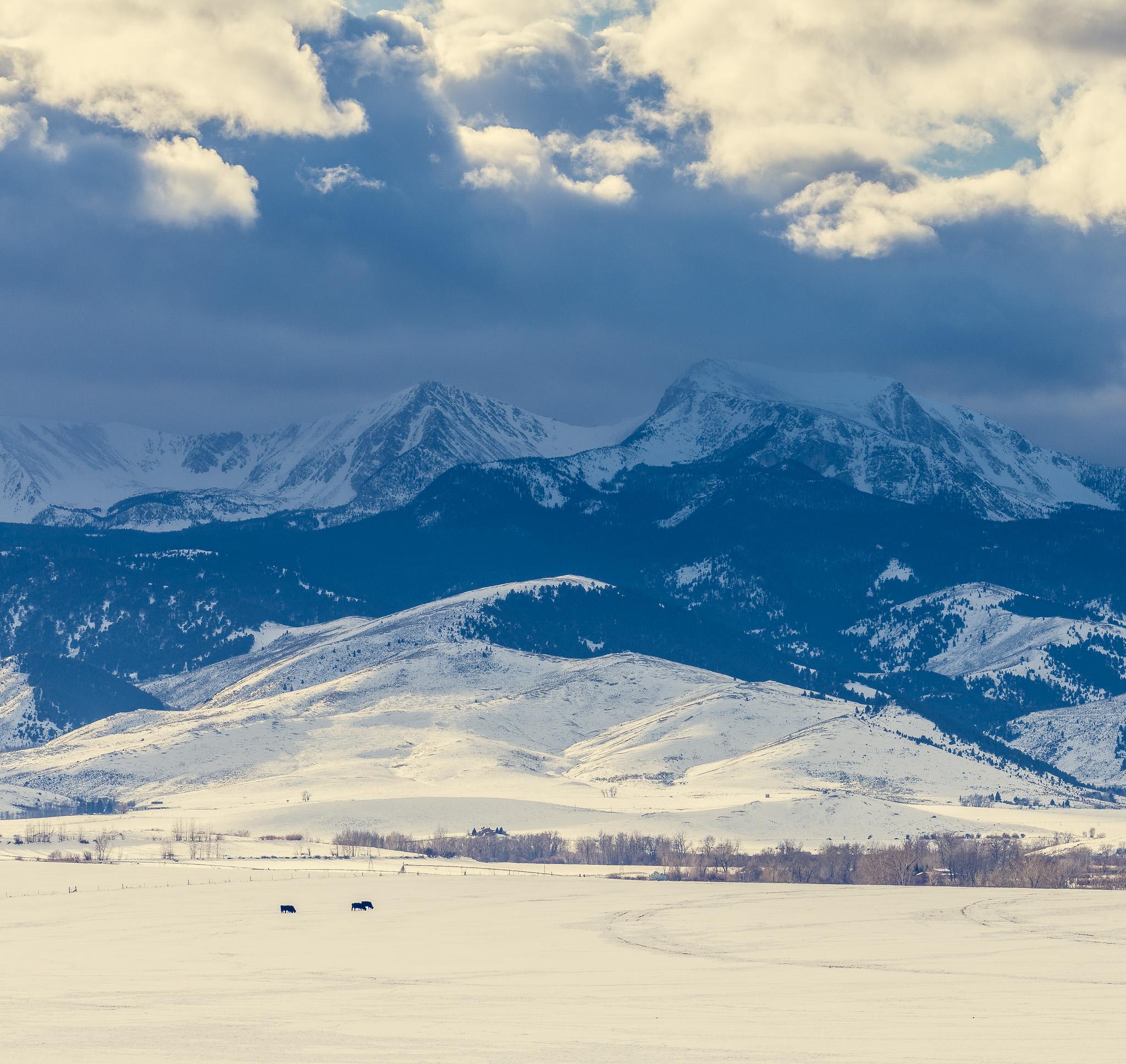 montana mountains-03-Jan2018 (1 of 1).jpg