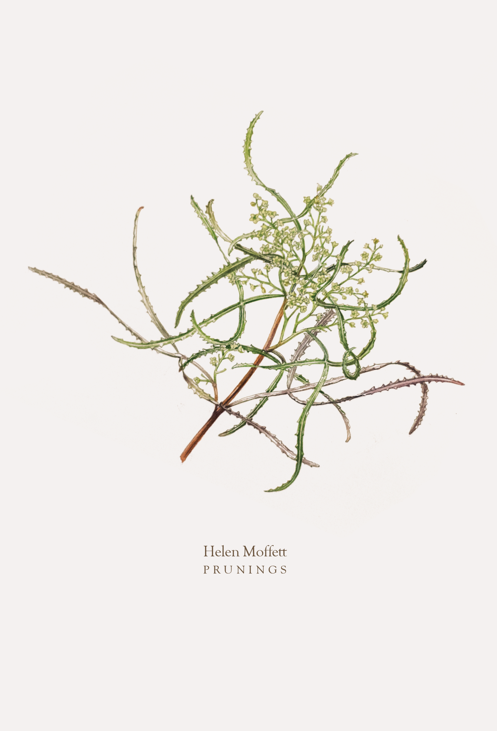 moffett_prunings_cover_20160815.png