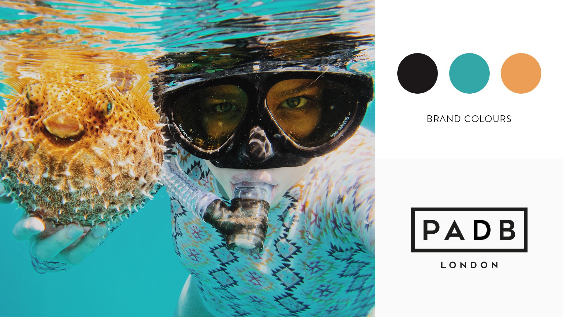 PADB Brand Colourway