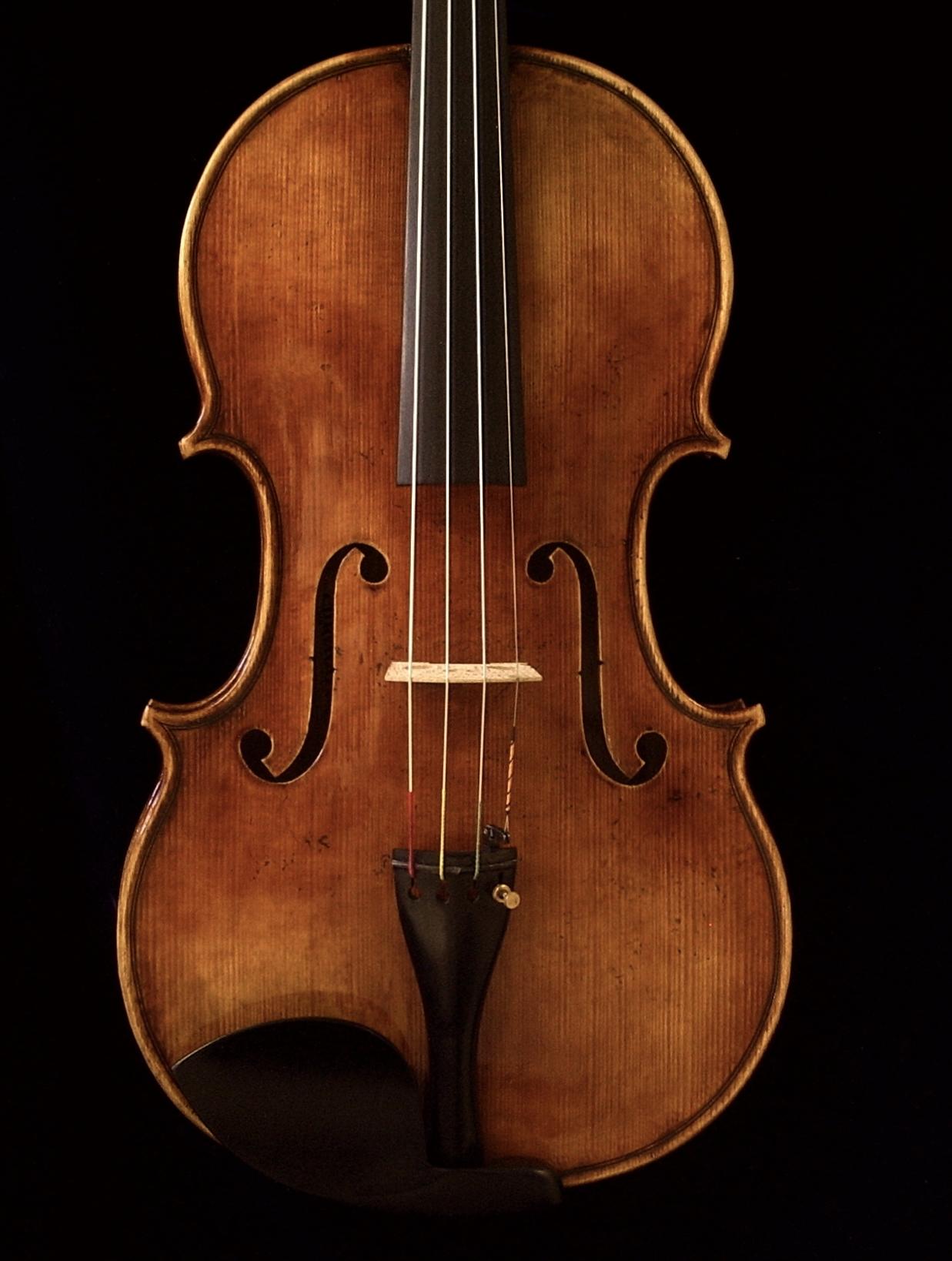 16-1/4 viola  2005